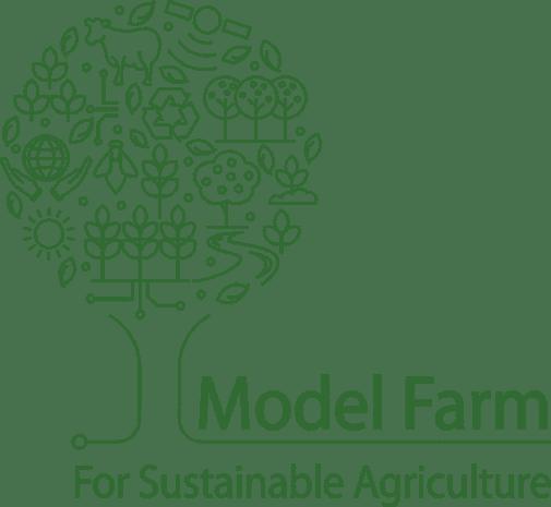 לוגו משק מודל