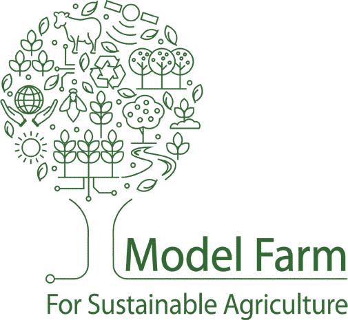 Model-farm-English-logo